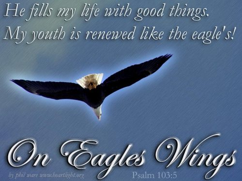 psalm103_5eagleswings2
